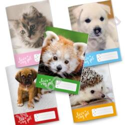 Füzet pd kisalakú 21-32 vonalas Love my pet - Fehér kölyök kutya
